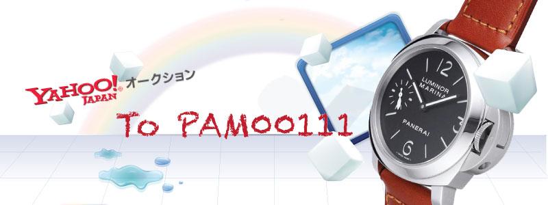 PAM00111